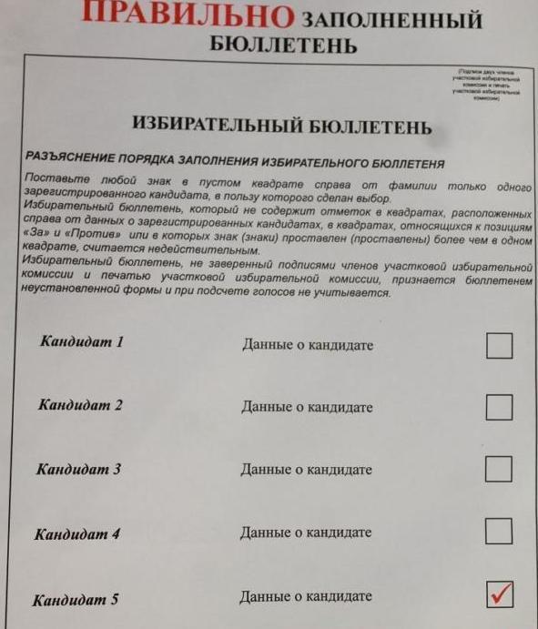 Пример избирательного бюллетеня