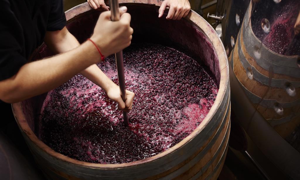 Можно ли продавать вино домашнее