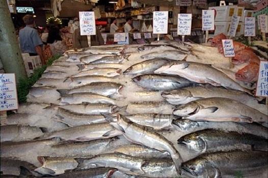 Продажа рыбы