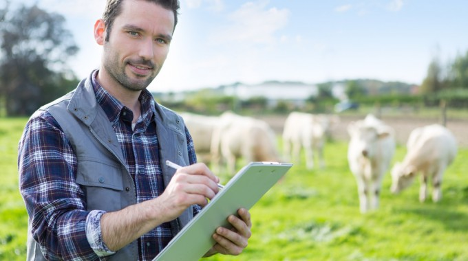 Рекомендации экспертов о помощи фермерам