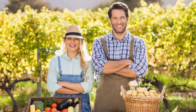 глава крестьянского фермерского хозяйства индивидуальный предприниматель