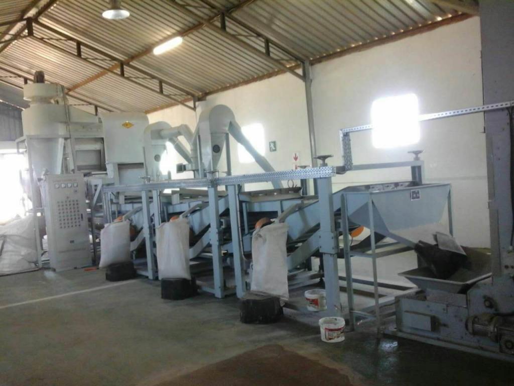 как очищают семечки подсолнуха на производстве