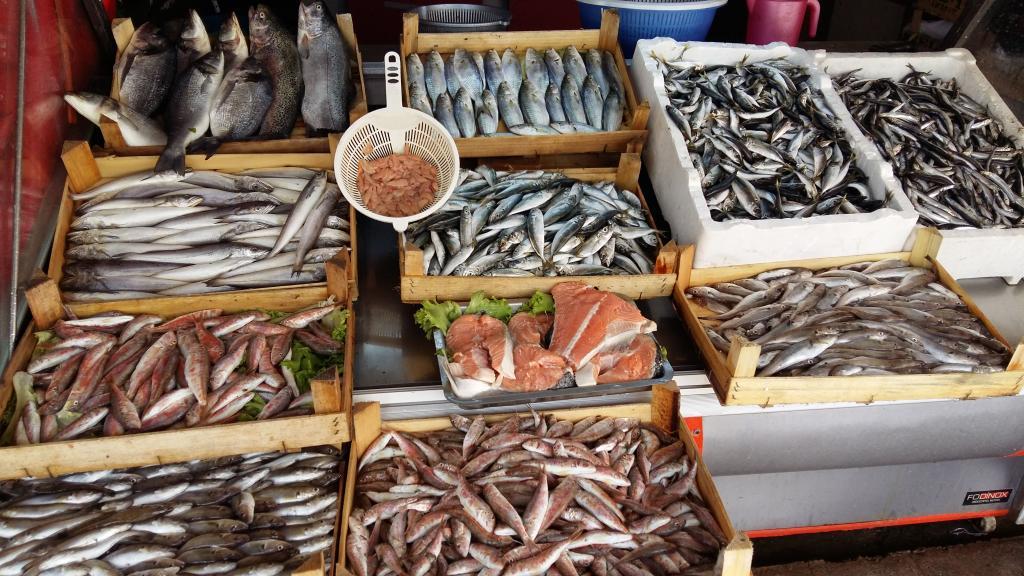 открыть рыбный магазин с нуля