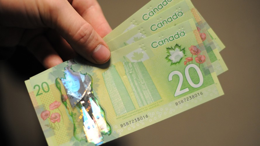 Канадский доллар как выглядит